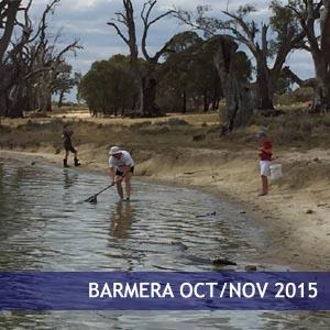 Barmera Oct/Nov 2015