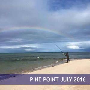 Pine Point July 2016