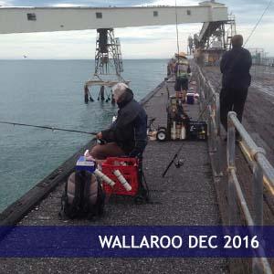 Wallaroo December 2016