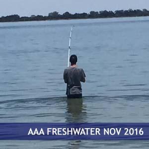 AAA Freshwater 2016